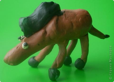 Конь Апельсин