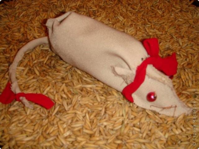 Мышка-модница