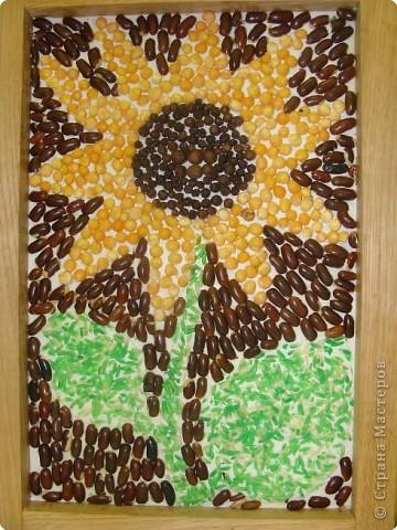 Подсолнух - солнечный цветок