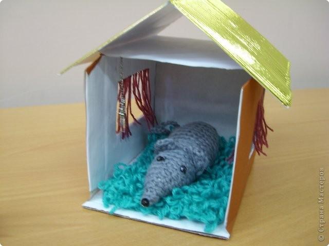 Мышка дома