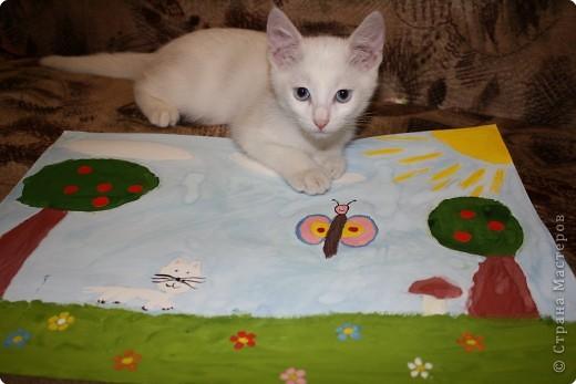 Так мы с котенком о лете вспоминали! фото 3