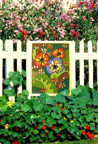 Лето в цветах фото 1