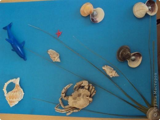 Морской мир фото 1