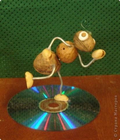 Летние муравьишкины Олимпийские игры. фото 2