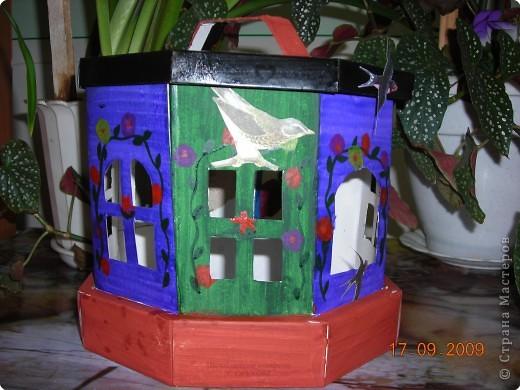 Птичья столовая. фото 3