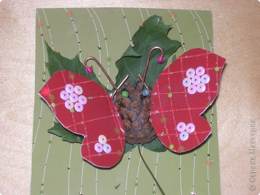 Про бабочку    Я в руки взял большой сачок  И долго поджидал.  Но вот прыжок,  Но вот скачок -  Я бабочку поймал.  Я ей на крылышки подул,  Немножко погрустил,  Потом взглянул,  Потом вздохнул,  А после - отпустил...   Николай Грахов
