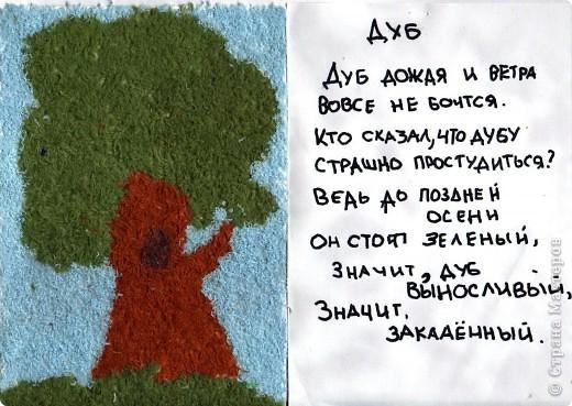 Деревья - наши друзья фото 6