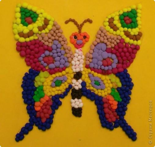 Бабочка-красавица фото 1