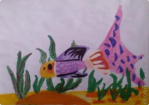 Рыбка-попугайчик фото 1