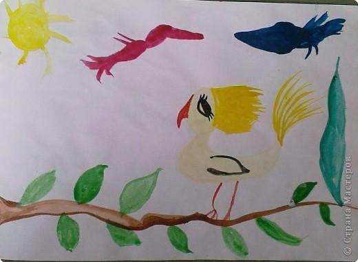 Рыбка-попугайчик фото 2