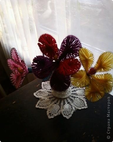 Сказочные цветы фото 3
