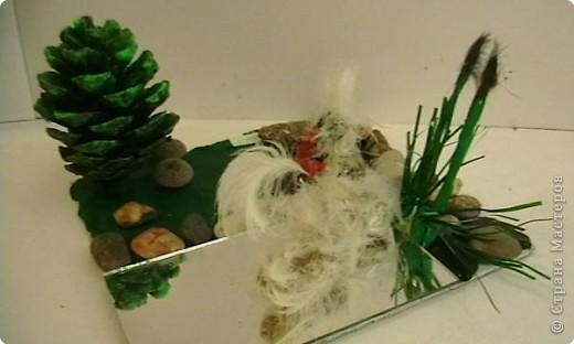 Волшебные лебеди фото 1