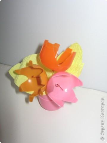 Полевы цветы фото 1