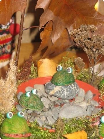 Лягушки на пруду