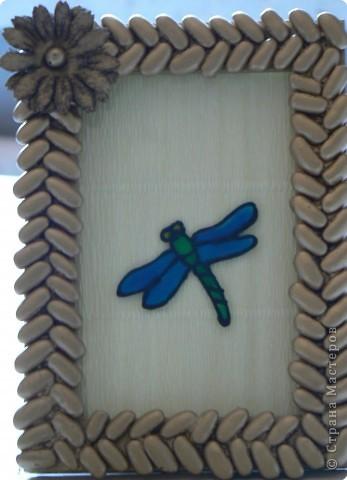 Стрекозка Фасоль, витражные краски.