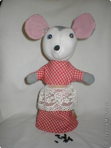 мышка Настена