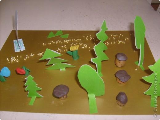 А на Брянщине водятся грибы, Разные они, Вкусные они! фото 1