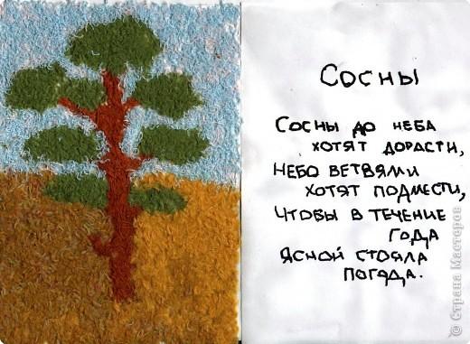 Деревья - наши друзья фото 5