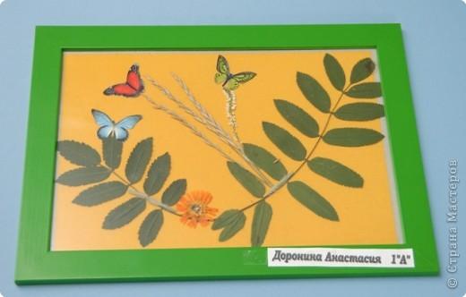 Бабочки- настоящее чудо природы! Для меняони как эльфы из сказочной страны. Они прилетают к нам каждое лето. А мне бы хотелось любоваться ими каждый день. Вот такая картина у меня получилась.