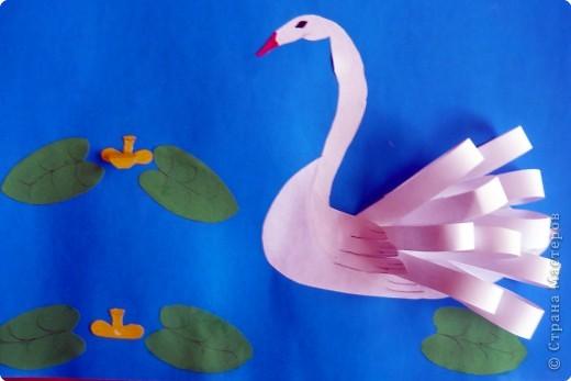 Наши лебеди фото 2