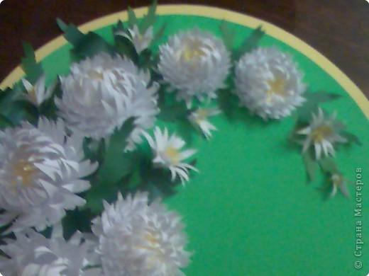 Хризантемы в подарок фото 2