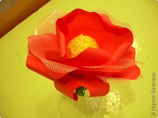 Роза  в подарок фото 3
