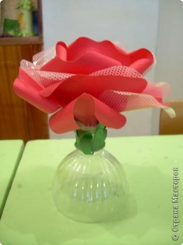 Роза  в подарок фото 2