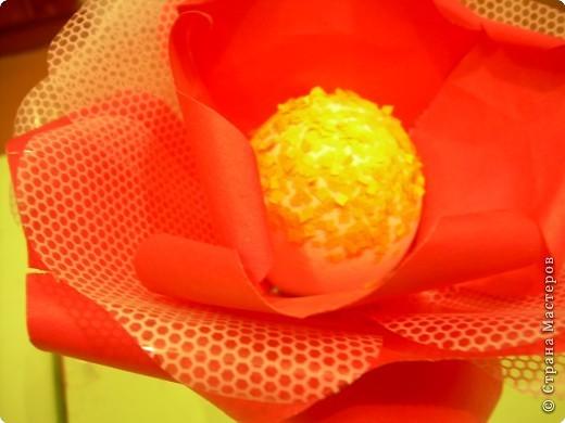 Роза  в подарок фото 4