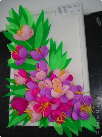 Летние цветы.  фото 1