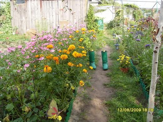 Хозяин сада – Кузьма. Он встречает гостей, следит за порядком. фото 3