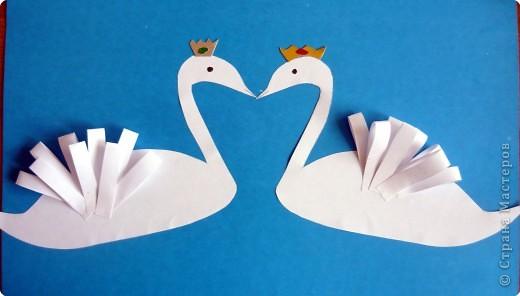 Наши лебеди фото 4