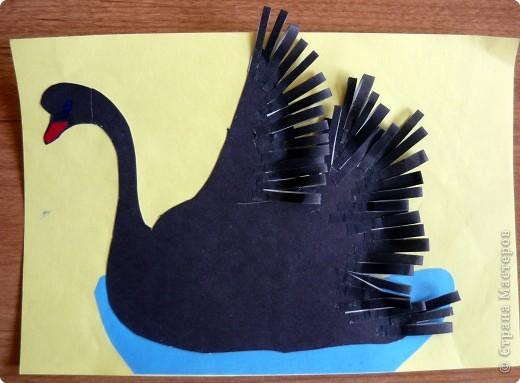 Наши лебеди фото 6