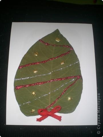 Вот такая ёлочка получилась из гербария. фото 1