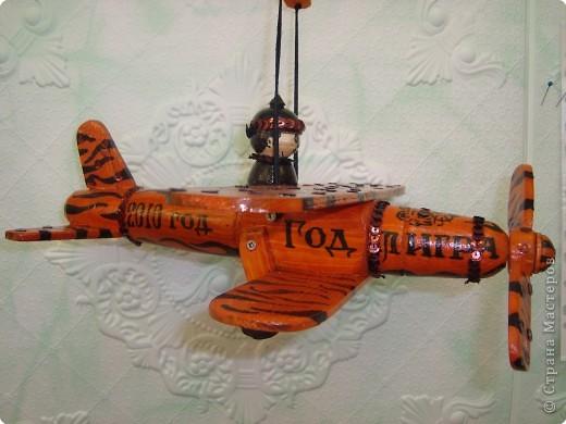 Тигр-самолёт. фото 2