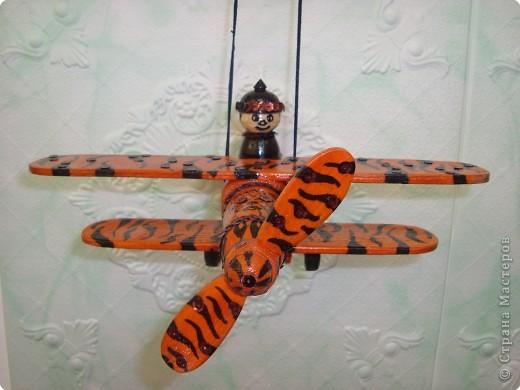 Тигр-самолёт. фото 3