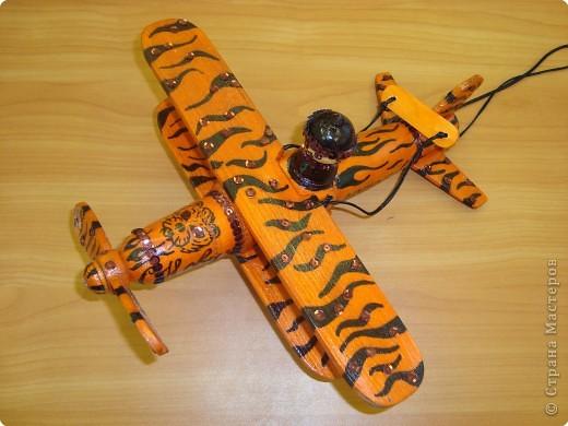 Тигр-самолёт. фото 4