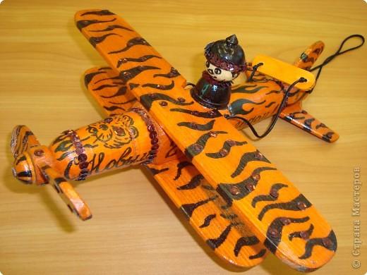 Тигр-самолёт. фото 1