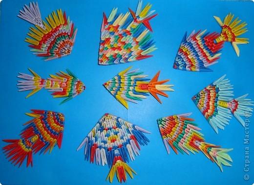 волшебные рыбки фото 2