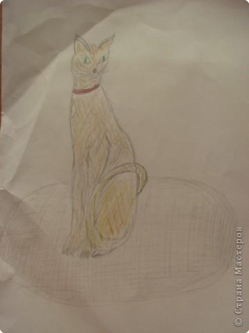 Кошка Линда