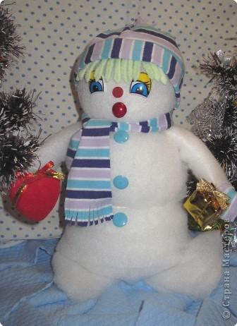 Снеговик и его друзья звездочеты. фото 8