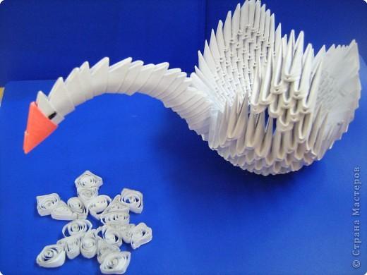 Царевна - лебедь фото 2