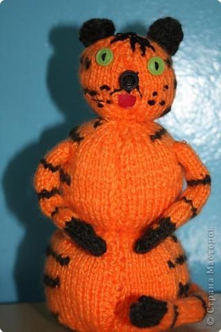 Оранжевый тигрёнок