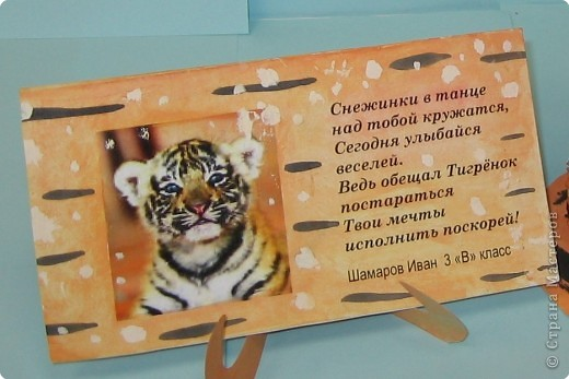Тигр под снегом фото 2