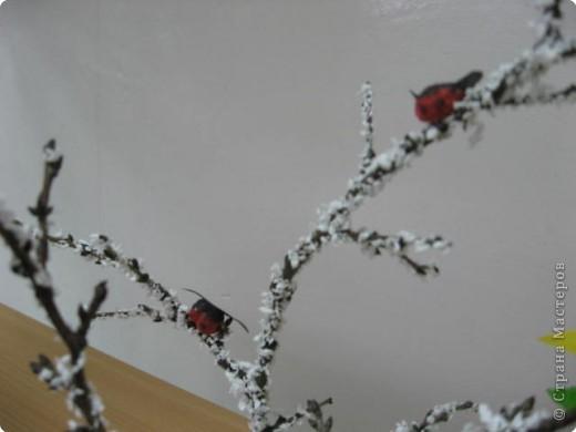 Новогодний лес фото 2
