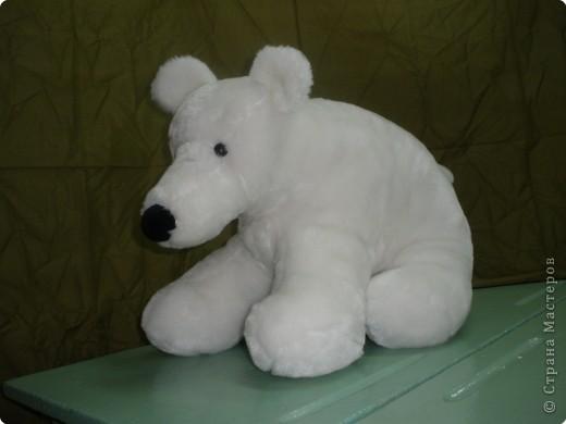 Белый полярный друг фото 2
