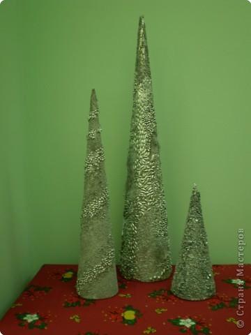 Серебряные красавицы фото 2