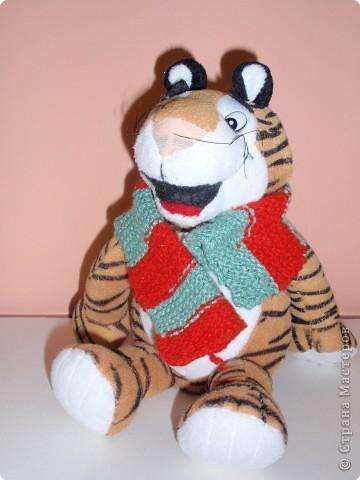 С Новым 2010 годом! В полосатый год тигра желаю, чтобы в вашей жизни не было ни одной черной полосы! фото 6