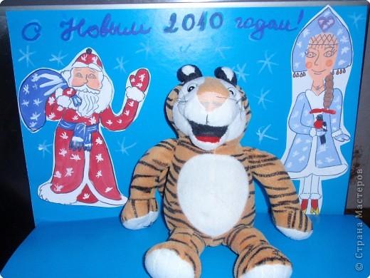 С Новым 2010 годом! В полосатый год тигра желаю, чтобы в вашей жизни не было ни одной черной полосы! фото 1