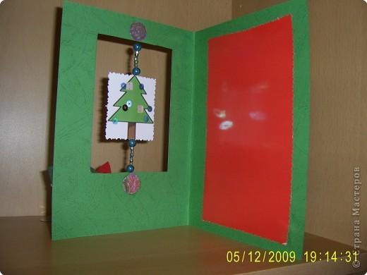 Рождественский цветок фото 2