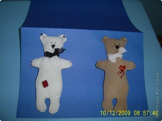 Медвежата фото 2